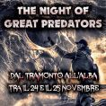The Night of Great Predators